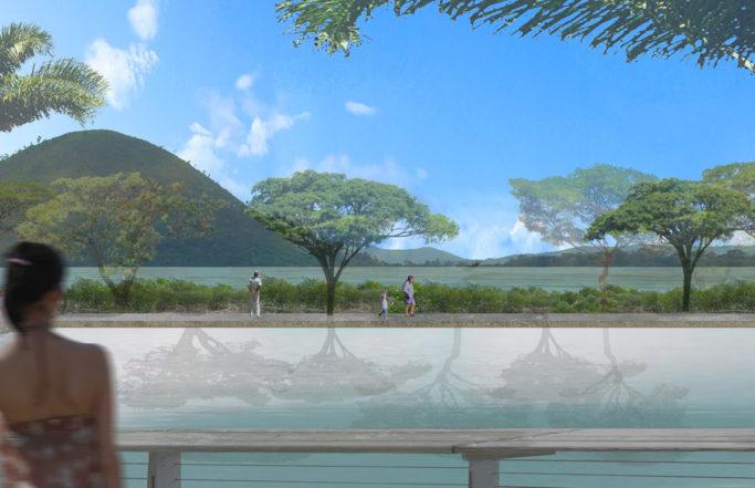Mangrove urbaine