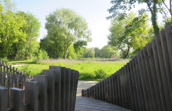 Jardin insulaire